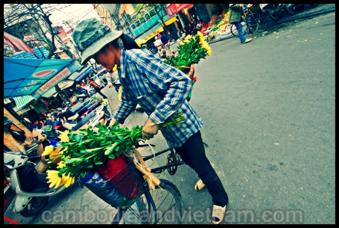 Flower Lady - Hanoi